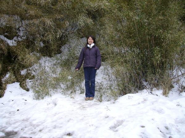 厚厚的積雪~但是很硬XD