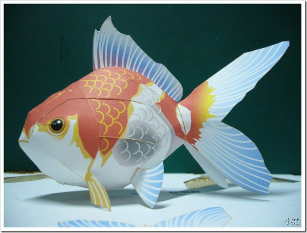 24667588:3D折紙-金魚