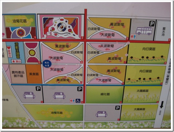 24699551:二週年紀念(下)-新社花海遊