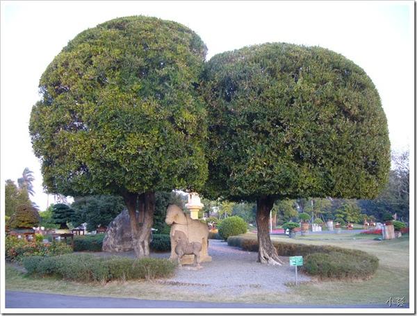 24707007:萬景藝苑盆栽展