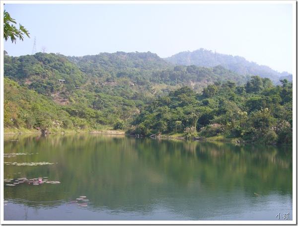 24707177:台灣潭釣魚去