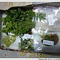24724203:網購水生植物