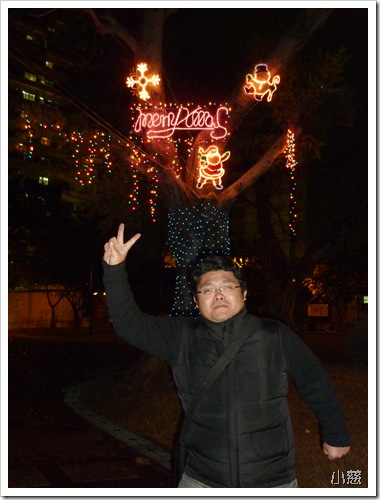 24768324:公園的聖誕節裝飾