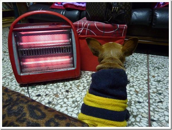 24793372:是誰擋住了暖爐!!