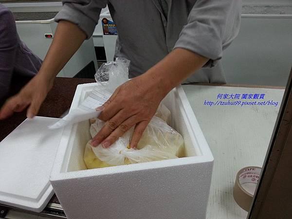 台電新村冰棒08
