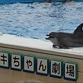 美麗海28.JPG