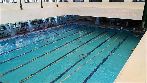 八里游泳池13.jpg