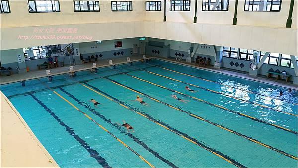 八里游泳池14.jpg