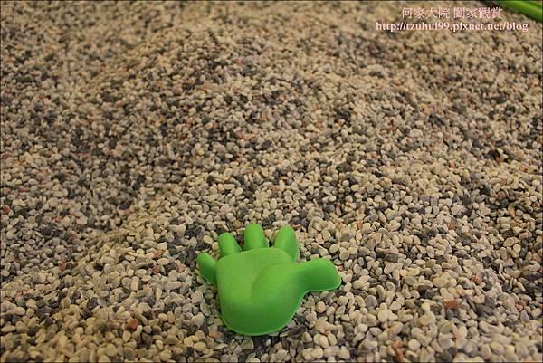 跳跳蛙30.JPG