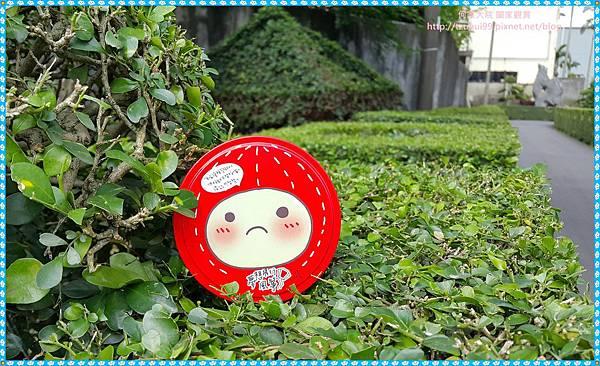 Hilife夢想飛行風箏12.jpg