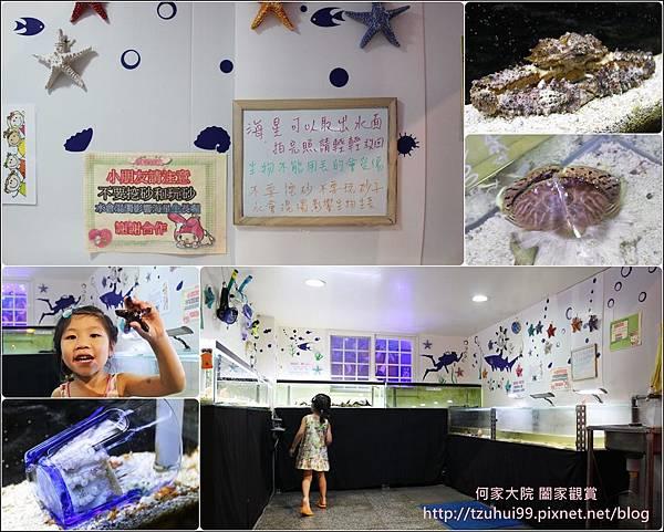 尼莫先生海洋生物主題餐廳 11.jpg
