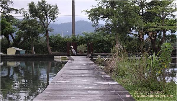 宜蘭勝洋休閒農場 31.JPG