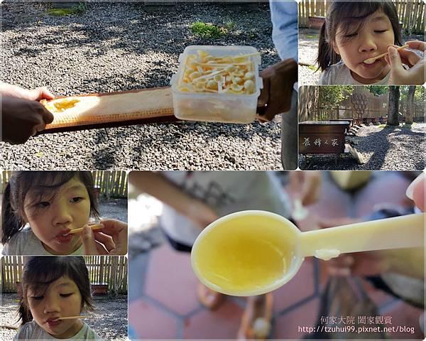 宜蘭養蜂人家蜂采館 13.jpg