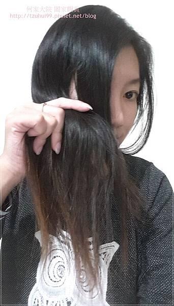 ES BIO 蜂膠髮技工程洗髮精 10.jpg