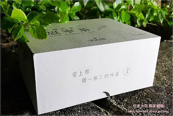 牛樟新葉思寧茶 02.jpg