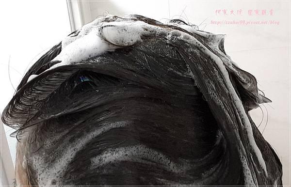 SYOSS絲蘊植萃潤澤洗髮精 12.jpg