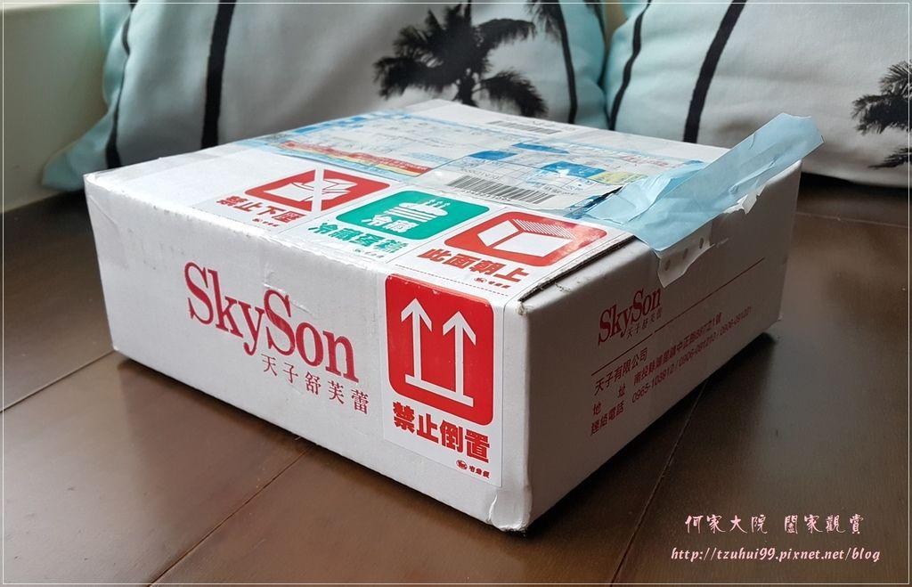 SkySon天子舒芙蕾埔里百香果舒芙蕾 01.jpg