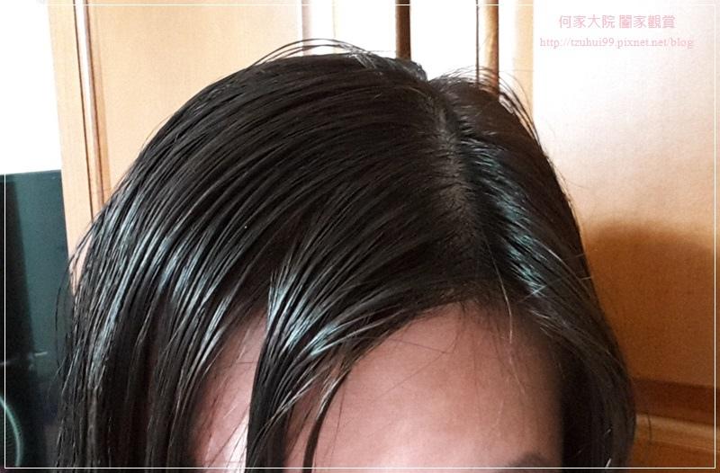 Fresh Light富麗絲小布娃娃染髮劑(亞麻棕色) 20.jpg