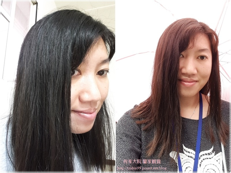Fresh Light富麗絲小布娃娃染髮劑(亞麻棕色) 22.jpg