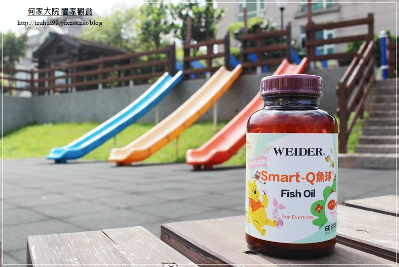 Weider威德SMARTQ小魚球 01.JPG