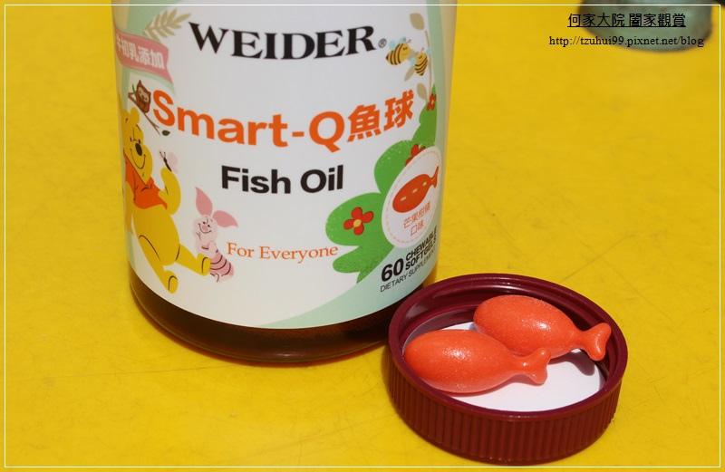 Weider威德SMARTQ小魚球 09.JPG