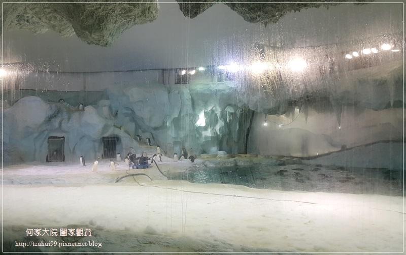 大陸珠海長隆海洋王國 17.jpg