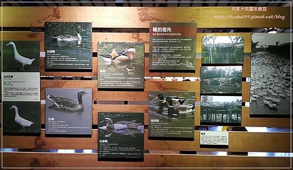 宜蘭五結鴨寮故事館(無料免費親子景點) 10.jpg