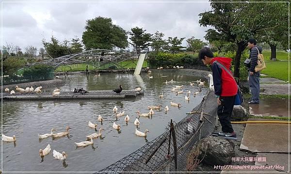 宜蘭五結鴨寮故事館(無料免費親子景點) 22.jpg
