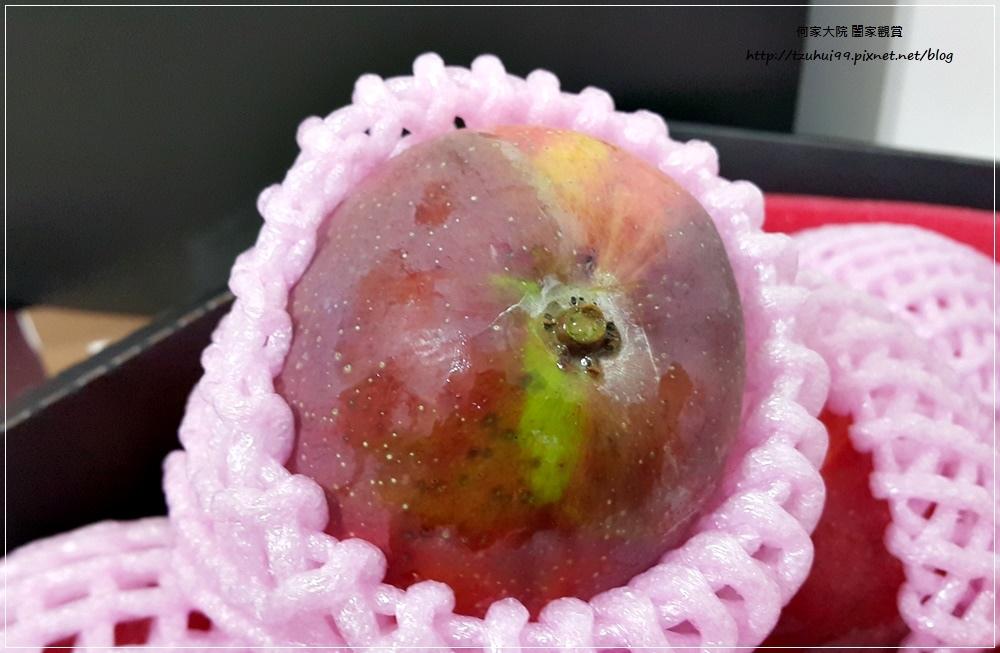 孫家愛文芒果(宅配美食宅配水果禮盒) 09.jpg