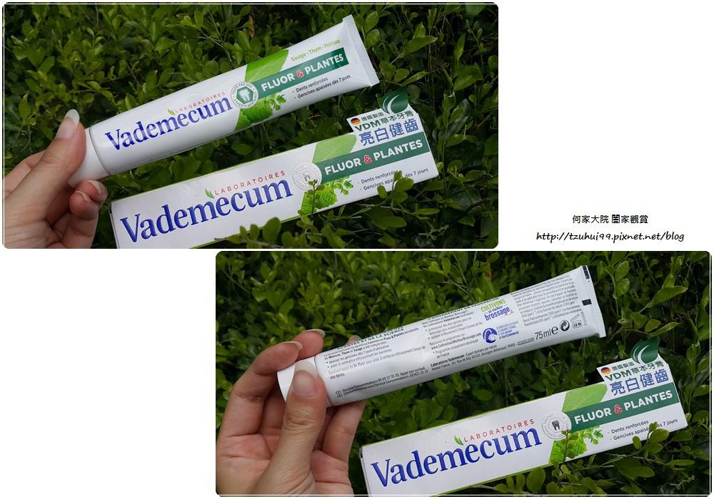 德國製造Vademecum草本清新健齒牙膏 07.jpg