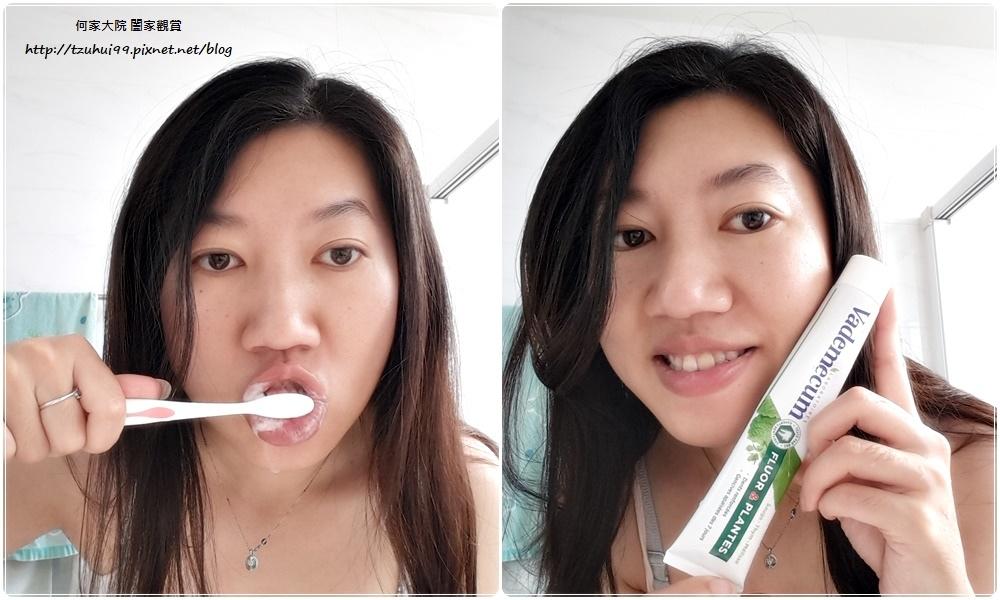 德國製造Vademecum草本清新健齒牙膏 11.jpg