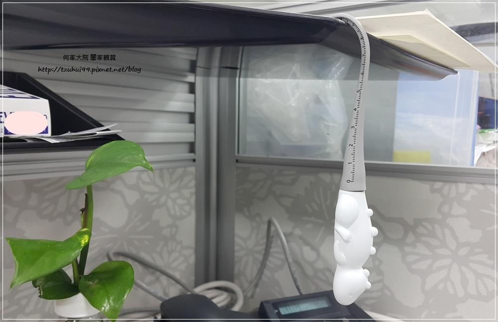 MYINNOS 賣創意-TOYOYO變色龍&恐龍短尺造型原子筆 18.jpg