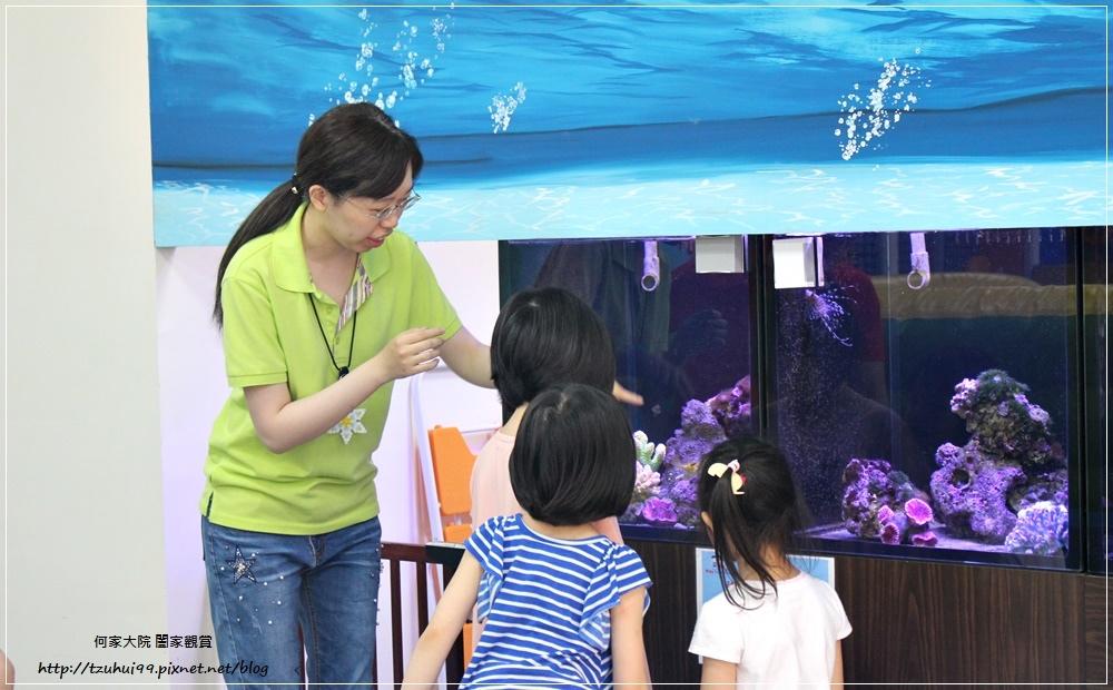 童遊水族館(童遊親子空間林口分館)林口親子餐廳 19.JPG