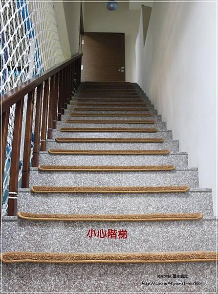 童遊水族館(童遊親子空間林口分館)林口親子餐廳 22.JPG