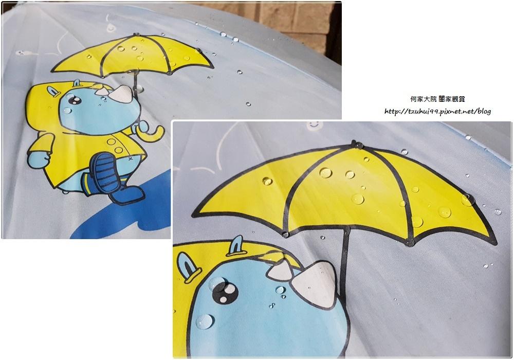 Aqua-Tex 防水噴霧職人綜合雙入組合包(原味&e柑橘清香) 23.jpg