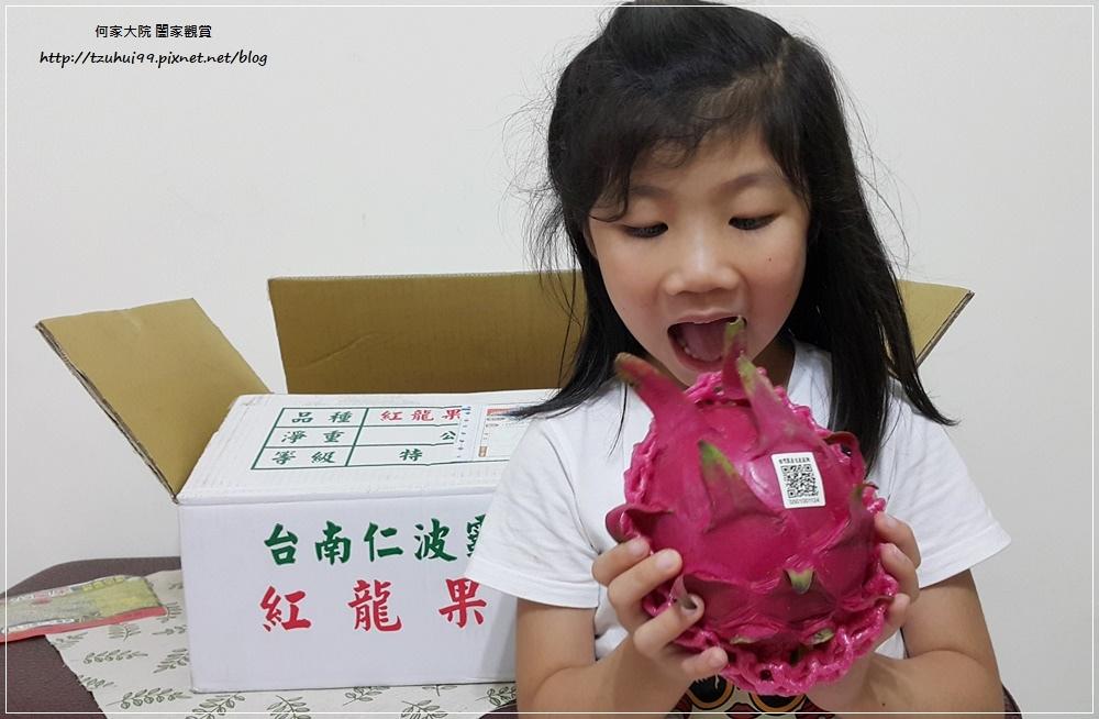 宅配美食台南仁波霸火龍果(產地直送) 09.jpg