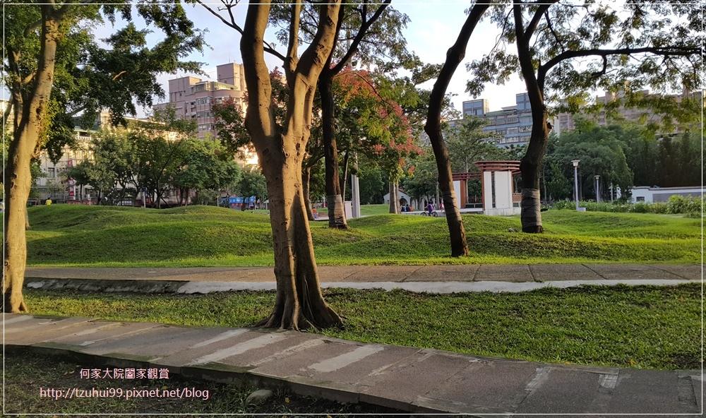 板橋溪北公園(八爪章魚溜滑梯公園+共融公園) 08.jpg