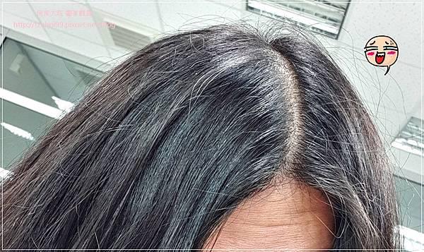 SYOSS絲蘊無矽靈強健髮根洗髮乳 10.jpg
