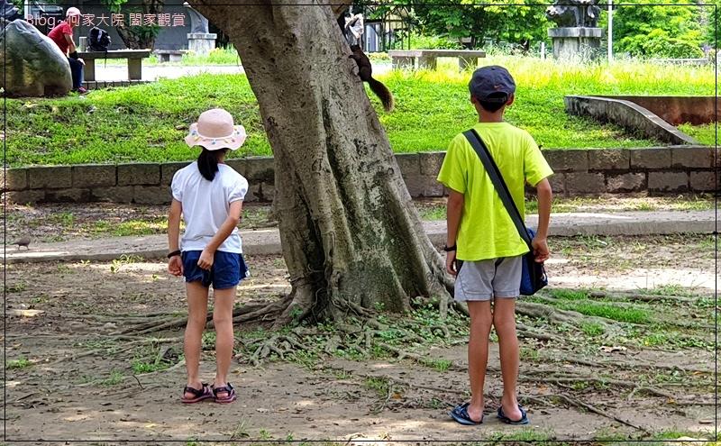 台北青年公園交通教學區(特色公園+交通主題+親子景點) 16.jpg