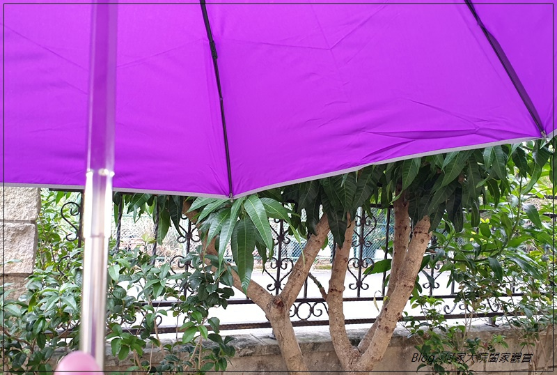Hoswa福思華洋雨傘 迷漾羽毛-安全自動開收折傘+紳士的品格-機能奈米安全自動折傘 10.jpg