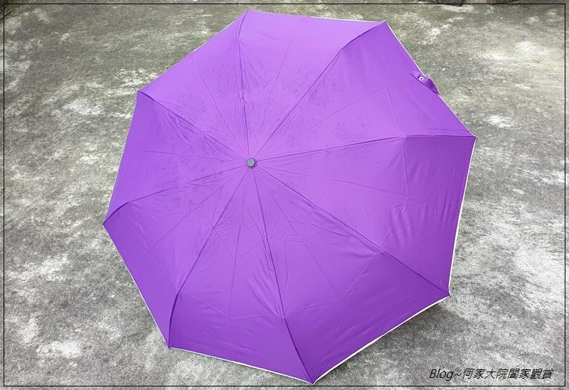 Hoswa福思華洋雨傘 迷漾羽毛-安全自動開收折傘+紳士的品格-機能奈米安全自動折傘 09.jpg