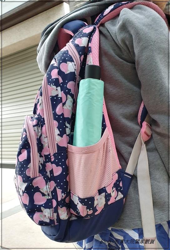 Hoswa福思華洋雨傘 迷漾羽毛-安全自動開收折傘+紳士的品格-機能奈米安全自動折傘 26.jpg