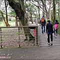 桃園蘆竹五酒桶山步道(南天宮旁步道+桃園親子景觀步道+大草坪) 19.jpg