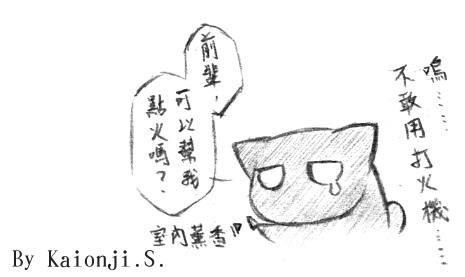 貓 2.jpg