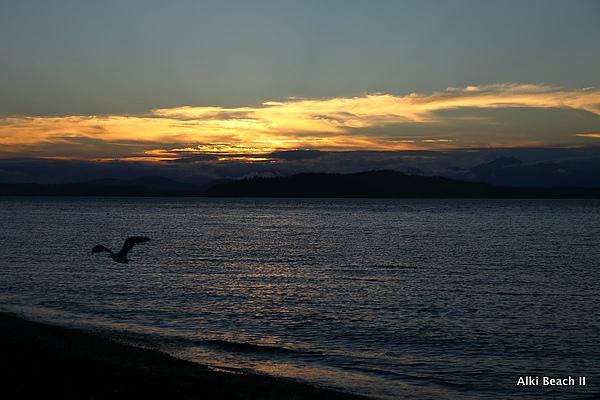 Alki Beach 70.JPG