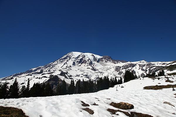 Mt Rainier28.JPG