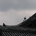 A2京都宇治『鳳凰堂』屋頂上的青銅鳳凰和有鷺鷥停駐的鳥衾