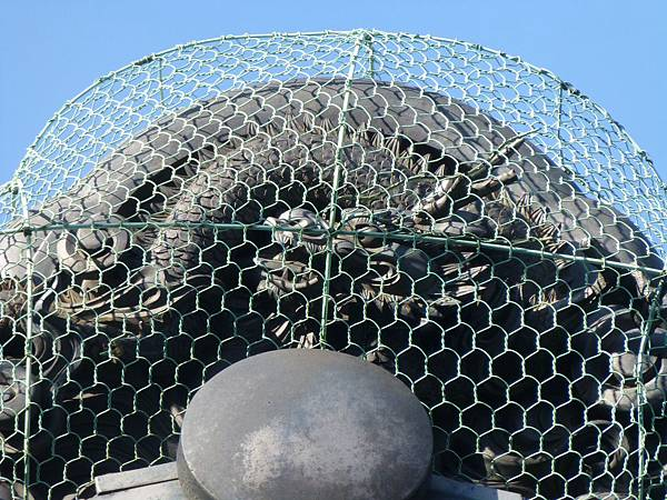 F1京都西陣老舖『富田屋』屋頂上精緻的蟠龍屋瓦,用鐵網包起來以免被野鳥破壞