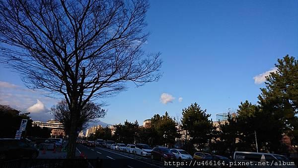 DSC_0709.JPG