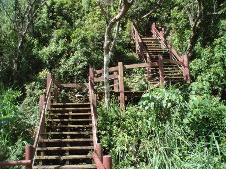 棧道木梯。